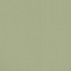 Mary Carol Paint Matte Gooseberry 153012